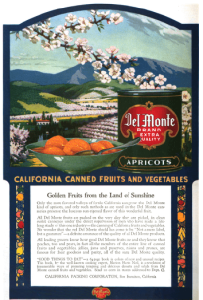 Del Monte advertisement showing bowl of apricots in front of mountain scene, 1918.