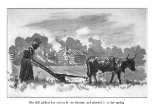 Illustration by Harry Roseland from Hazel by Mary White Ovington, captioned She still picked her cotton in the autumn...