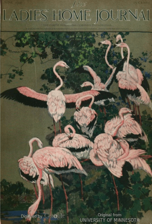 June 1916 Ladies' Home Journal cover depicting pink flamingos.